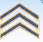 1 POLICE CHEVRONS WITH BLUE ENAMEL